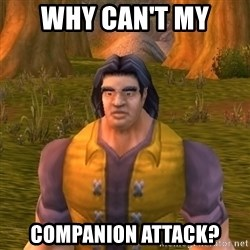 Noob WoW Player - WHY CAN'T MY COMPANION ATTACK?