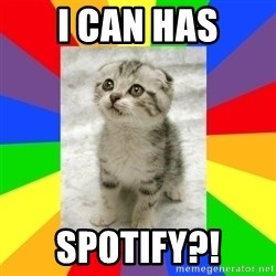 Cute Kitten - i can has spotify?!