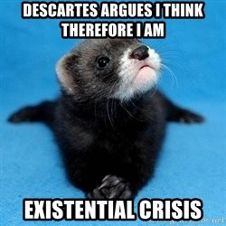 Philosophy Major Ferret - Descartes argues i think therefore i am existential crisis
