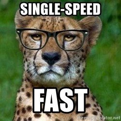 Hipster Cheetah - single-speed fast