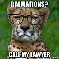 Hipster Cheetah - Dalmations? call my lawyer