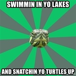 Poker turtle - swimmin in yo lakes and snatchin yo turtles up