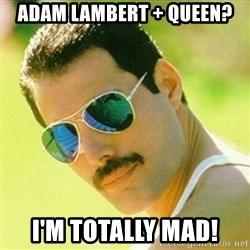 typical Queen Fan - Adam lambert + Queen? I'm Totally Mad!