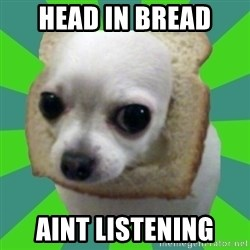 Taco Bread - head in bread aint listening