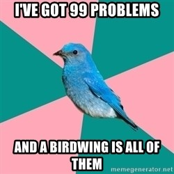 Sexually Obvious Bird - I've got 99 problems And a Birdwing is all of them