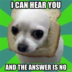 Taco Bread - I CAN HEAR YOU AND THE ANSWER IS NO