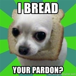 Taco Bread - I BREAD YOUR PARDON?