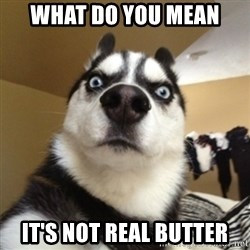Surprised Husky - What do you mean it's not real butter