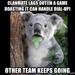 Koala can't believe it - Clanmate lags out(in a game boasting it can handle dial-up) other team keeps going