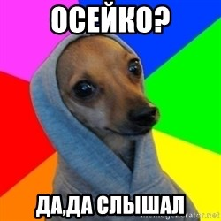 Good Guy Greg's dog - осейко? да,да слышал