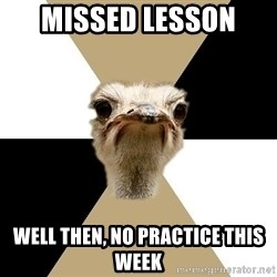 Music Major Ostrich - Missed lesson  well then, no practice this week