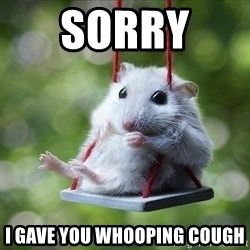 Sorry I'm not Sorry - SORRY  I GAVE YOU WHOOPING COUGH
