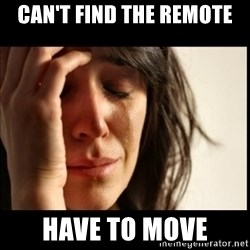 First World Problems - can't find the remote have to move