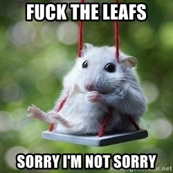 Sorry I'm not Sorry - fuck the leafs sorry i'm not sorry