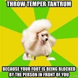 Pretentious Theatre Kid Poodle - throw temper tantrum because your foot is being blocked by the person in front of you