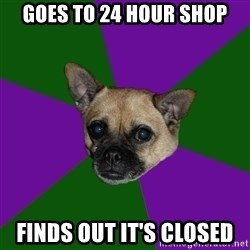 WTF dog - goes to 24 hour shop finds out it's closed