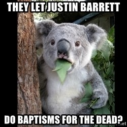 Koala can't believe it - They let Justin Barrett do baptisms for the dead?
