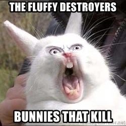 Rabbit On Alert - The Fluffy Destroyers bunnies That kill