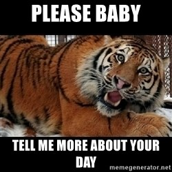 Sarcasm Tiger - please baby tell me more about your day
