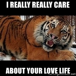 Sarcasm Tiger - i really really care about your love life