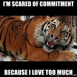Sarcasm Tiger - i'm scared of commitment because i love too much