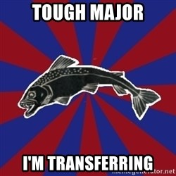 Borderline Blackfish - Tough Major I'm transferring