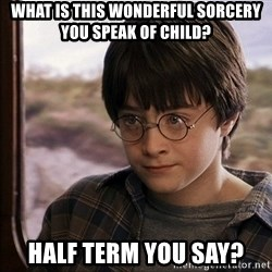 Harry Potter 2 - What is this wonderful sorcery you speak of child? Half term you say?
