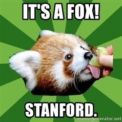 Red Panda - It's a fox! stanford.