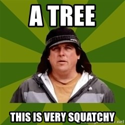 Bobo from Finding Bigfoot - a tree  this is very squatchy