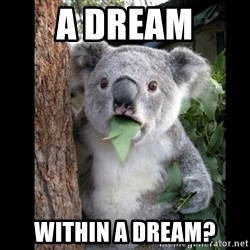 Koala can't believe it - A dream within a dream?