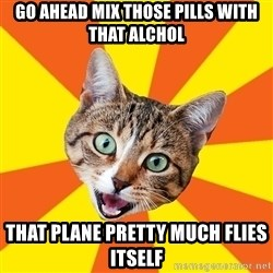 Bad Advice Cat - go ahead mix those pills with that alchol that plane pretty much flies itself