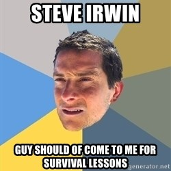 Bear Grylls - steve irwin guy should of come to me for survival lessons