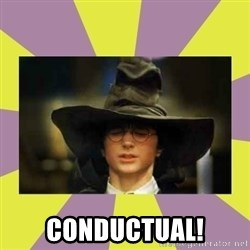 Harry Potter Sorting Hat - conductual!