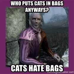 Sheogorath - who puts cats in bags anyways? cats hate bags