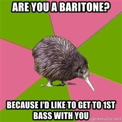 Choir Kiwi - are you a baritone? because i'd like to get to 1st bass with you