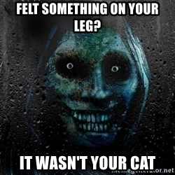 Uninvited house guest - Felt something on your leg? It wasn't your cat
