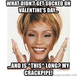 Whitney Houston - What didn't get sucked on valentine's day... ...and is ^this^ long? My crackpipe!