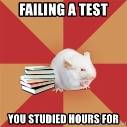 Science Major Mouse - failing a test you studied hours for
