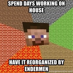 Minecraft Guy - Spend days working on house have it reorganized by Endermen