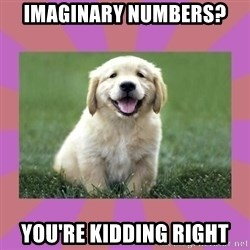 a level puppy - imaginary numbers? you're kidding right