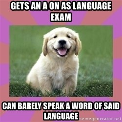 a level puppy - gets an a on as language exam can barely speak a word of said language