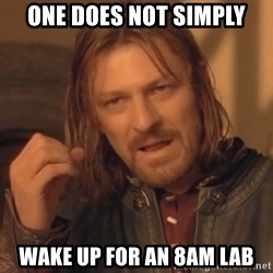 Aragorn - one does not simply wake up for an 8am lab