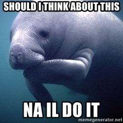 fat positive manatee - should i think about this na il do it