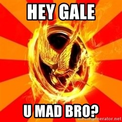 Typical fan of the hunger games - Hey gale u mad bro?