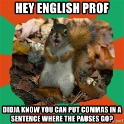 Ill-Informed Squirrel - hey english prof didja know you can put commas in a sentence where the pauses go?