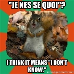 """Ill-Informed Squirrel - """"Je nes se quoi""""? I think it means """"I Don't Know."""""""