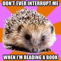 Homeschooled Hedgehog - Don't Ever Interrupt me When I'm reading a book