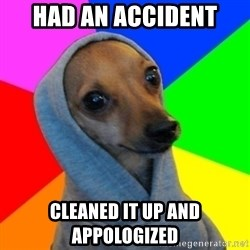Good Guy Greg's dog - Had an accident cleaned it up and appologized