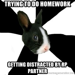 Roleplaying Rabbit - Trying to do homework getting distracted by rp partner