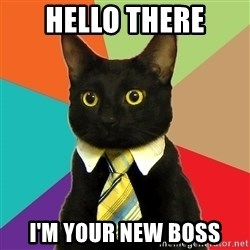 Business Cat - HELLO THERE I'M YOUR NEW BOSS